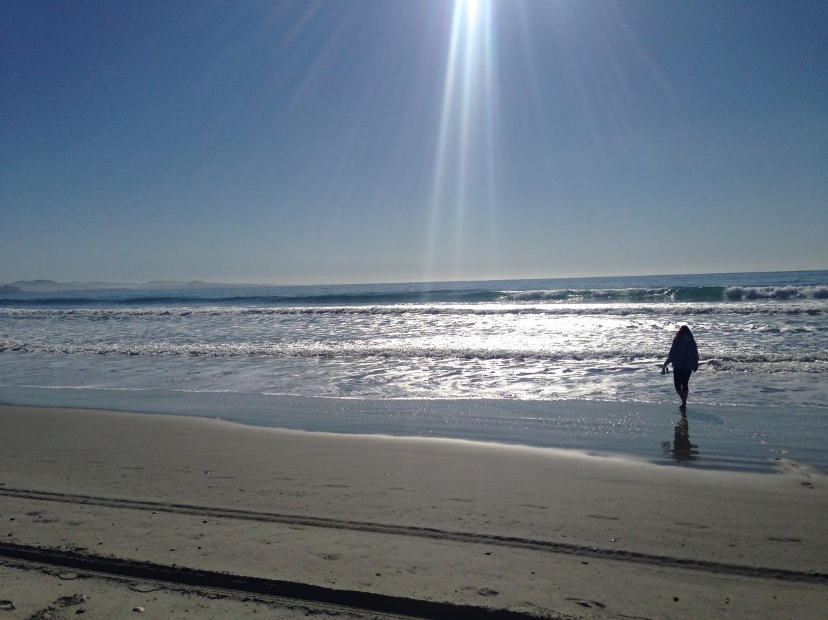 Long Beach, Dunedin (Part1)
