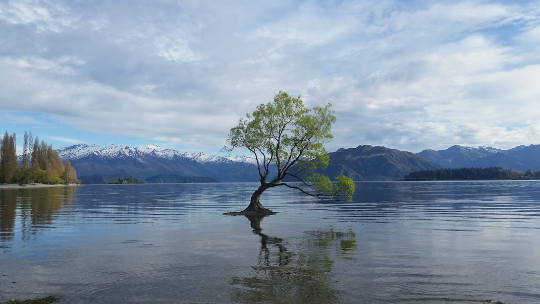 Wanaka (Part 1)