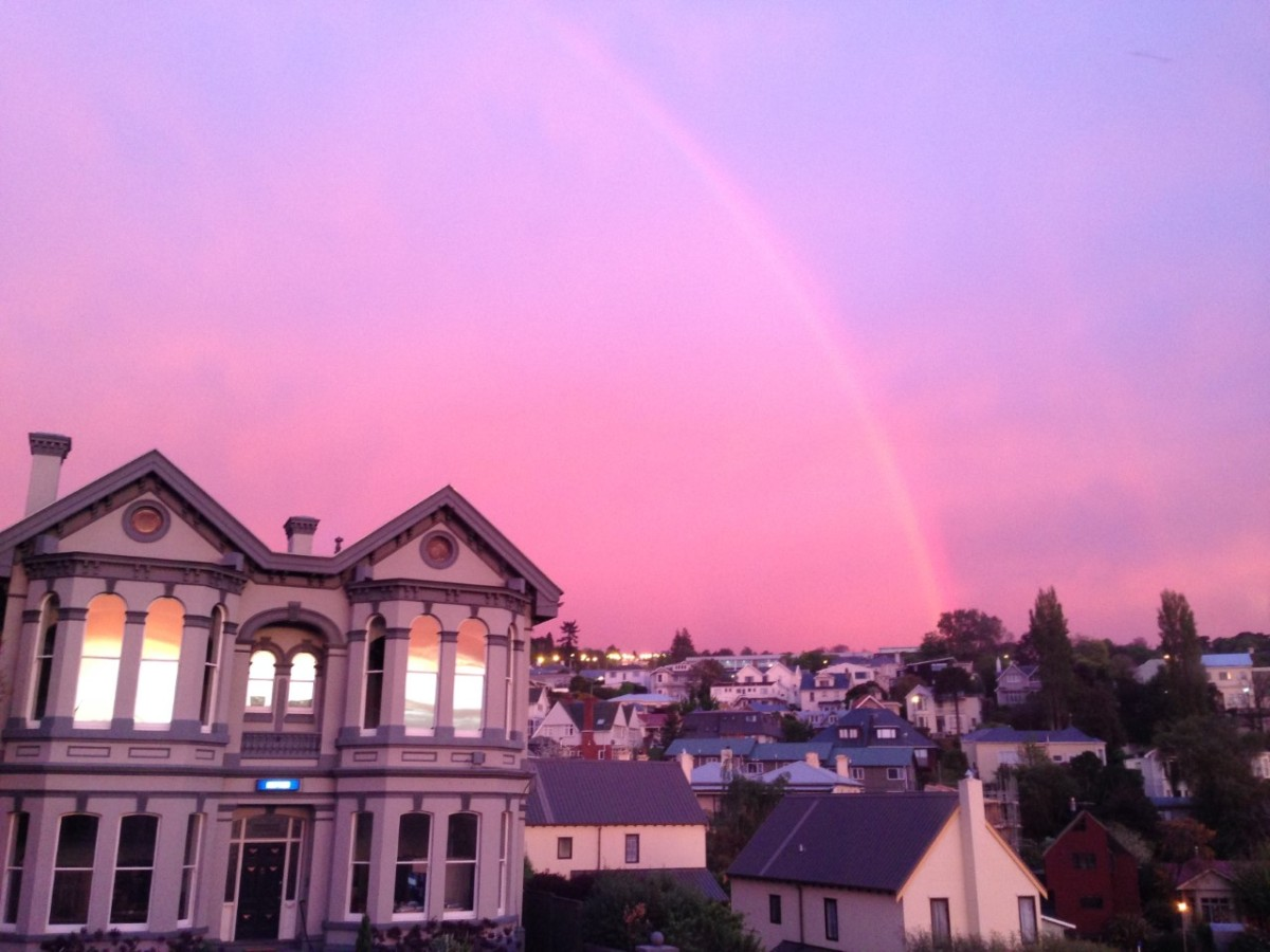 Dunedin Mornings