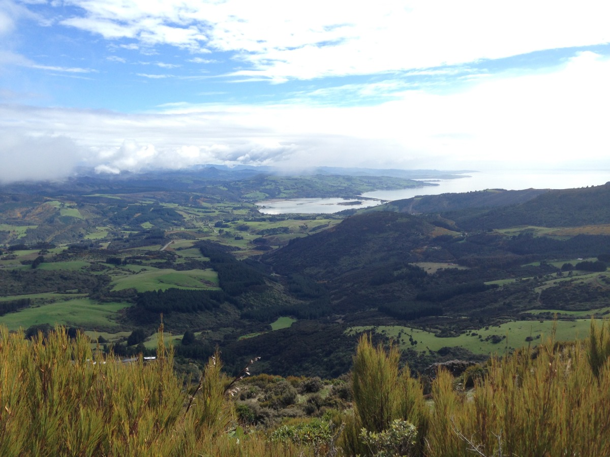 Mount Cargill, Dunedin